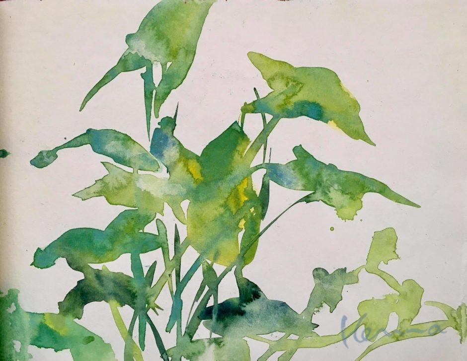 水彩葉っぱ01